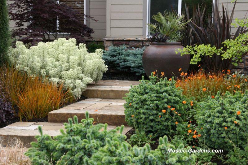 Smallgarden ideas from Thomas Rainer Garden Rant