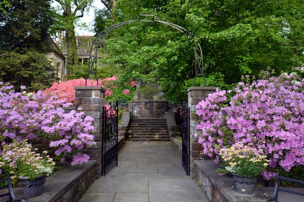 Winterthur in Summer   GardenRant