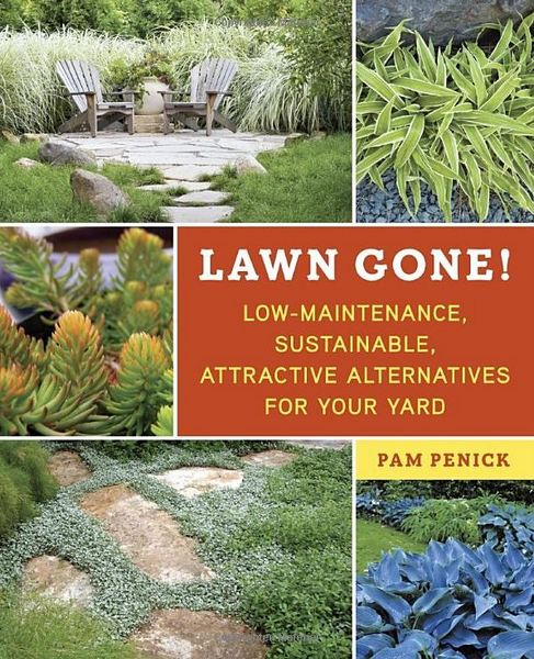 Want your kids to play outside? Rip out the lawn! | GardenRant Xeriscape Garden Design Ideas Minnesota on landscape garden design ideas, low water front yard landscape design ideas, wildflower garden design ideas, community garden design ideas, rain garden design ideas, cottage garden ideas, native garden design ideas, butterfly garden design ideas, tree garden design ideas, arizona garden design ideas, drought garden design ideas, plant rock garden ideas, perennial garden design ideas, water garden design ideas, grass garden design ideas, patio garden design ideas, spring garden design ideas, traditional garden design ideas, hardscape garden design ideas, home garden design ideas,