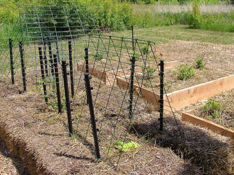 Tale of a Strawbale Raised Bed