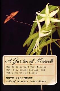 GardenOfMarvels_HC_c