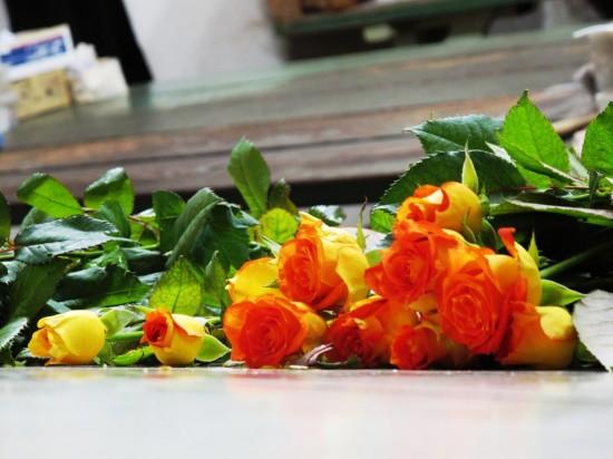 Lovely hybrid tea roses grown in Oregon by Peterkort Roses, a 3rd generation family flower farm.