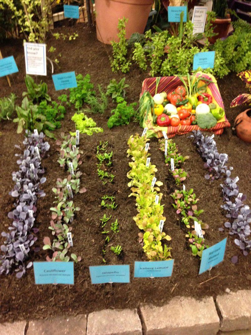 Seen at the garden show | Garden Rant