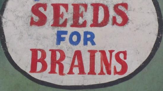 He's Got Seed For Brains Pumpkin Boy Hobbs PPA  1 2013