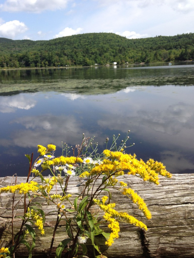 Along North Lake
