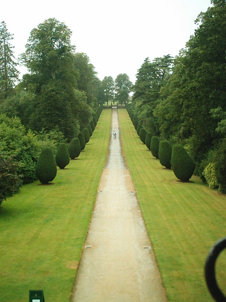 You may remember this avenue from Sense and Sensibility.