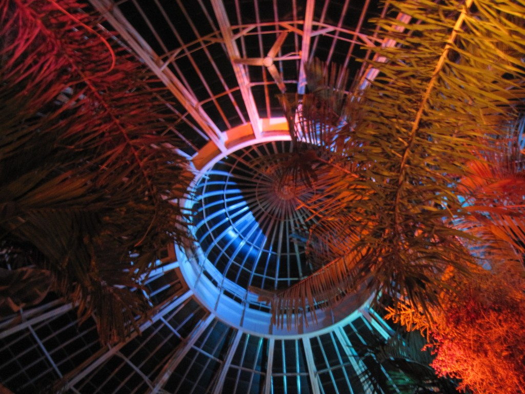 A popular night lighting show is a big winter attraction at the Gardens.
