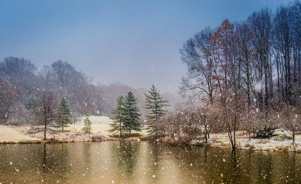 meadowlark-5717-edit