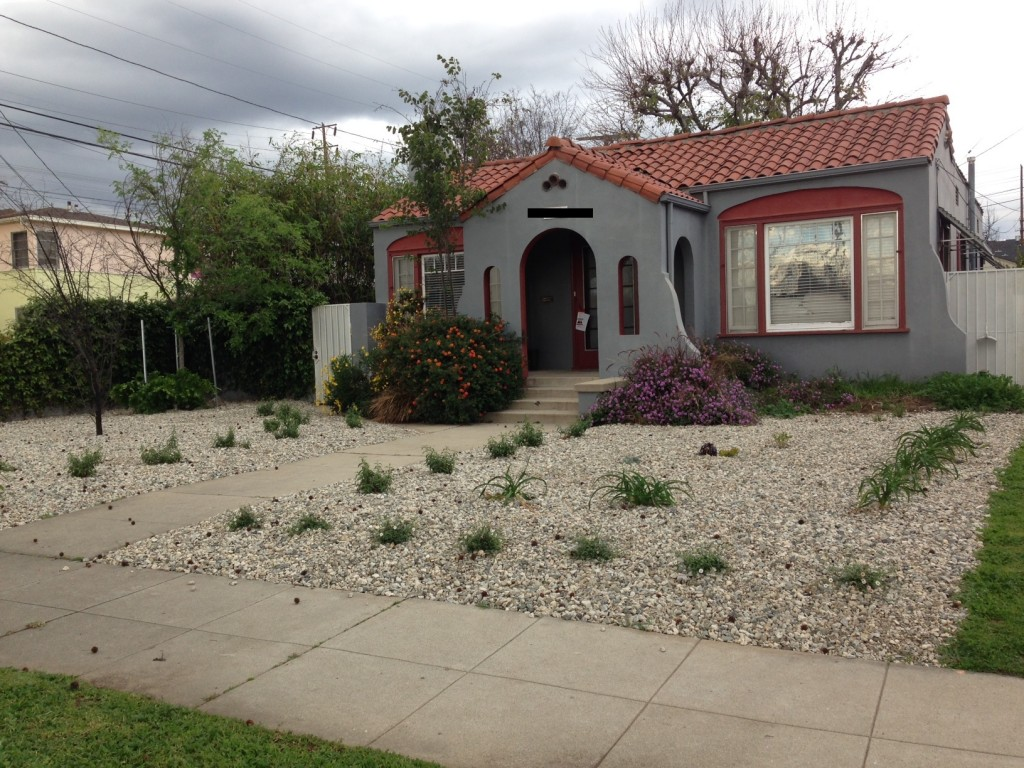 This is NOT what I thought the new, state-of-the-art style of drought tolerant landscape was going to look like!