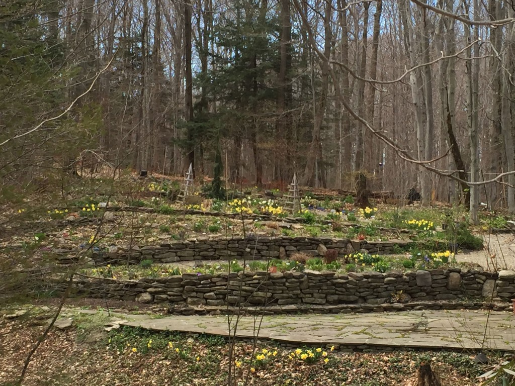 GardenRant | Uprooting the Gardening World | Page 21