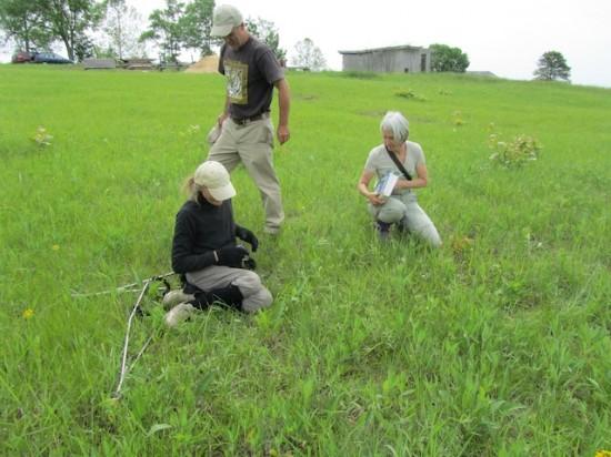 Hilary Cox, Julian Campbell and Dee Ann Peine near Cecilia, Kentucky