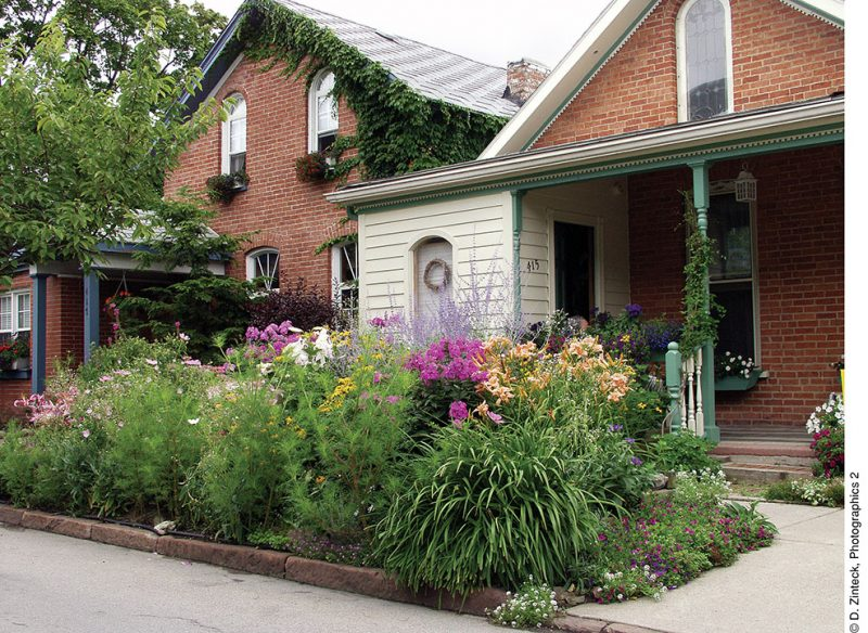 "Garden Walk Buffalo"" and ""© D. Zinteck, Photographics 2"