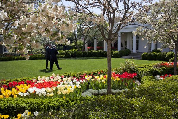 inside the white house rose garden memory book gardenrant