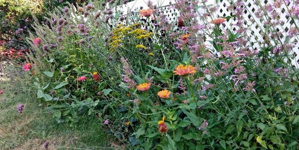 pollinatorfence_edited-1