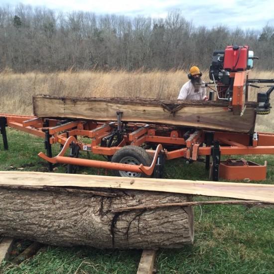 Bill Jones, sawing walnuts 121415
