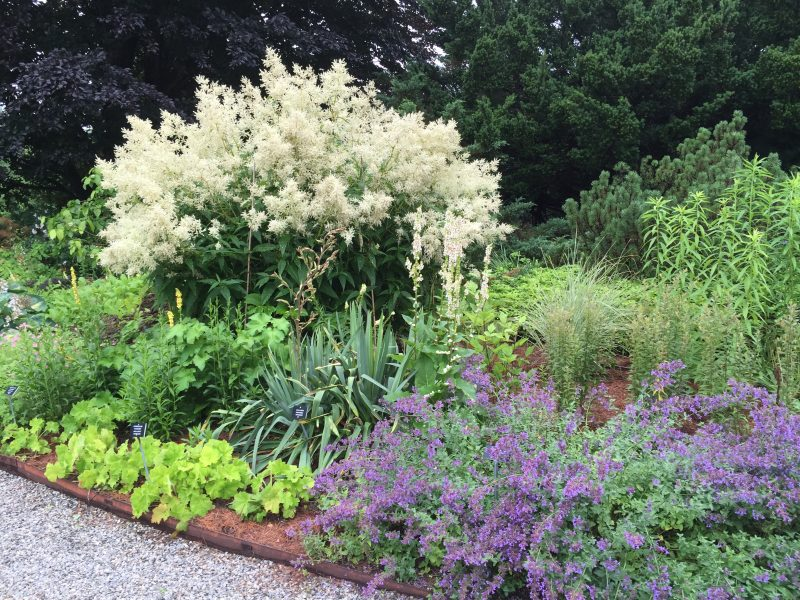Here Some Naturalistic Plantings At The Berkshire Botanical Gardens, A  Lovely Site We Happened Upon