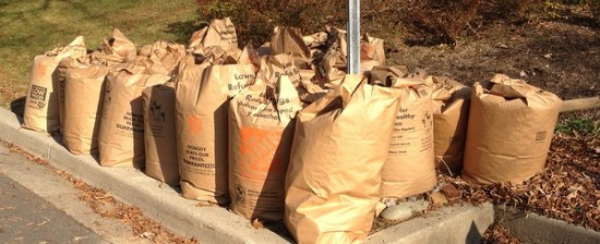 Home Depot S Leaf Bags And Their Eco Terrible Tips