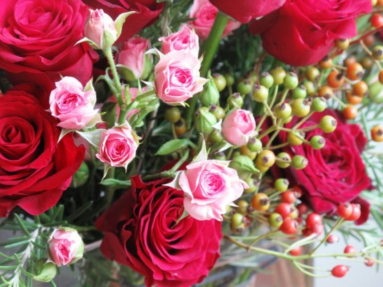 Win a bouquet from an American Rose Farm – and keep