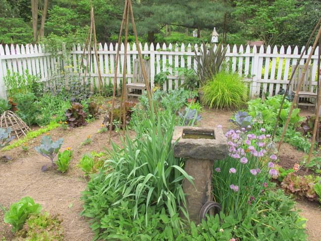 Garden of David Culp