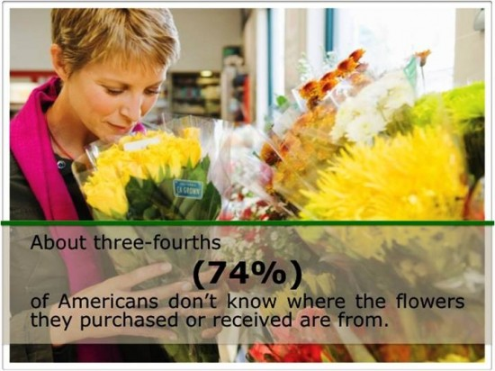 This infographic says it all. Courtesy, California Cut Flower Commission.