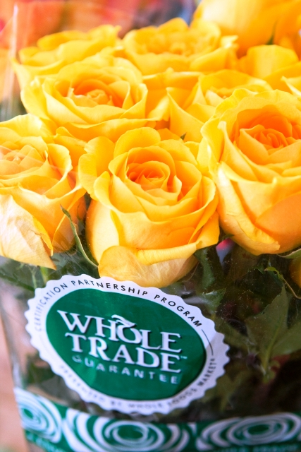 Whole Trade roses from Whole Foods. Imported from South America.