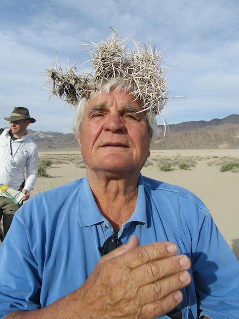 Kurt Bluemel and a crown of Echinocactus polycephalus at Racetrack Playa in Death Valley.