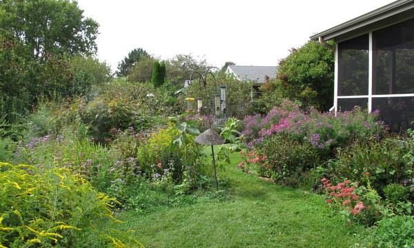 Wildlife Garden, Cape May New Jersey