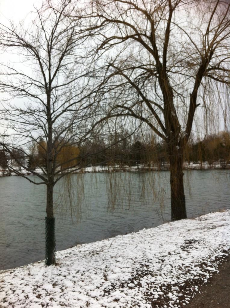 Olmsted's Delaware Park, Hoyt Lake