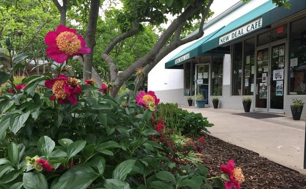 Landscape in Roosevelt Center, Greenbelt, Md.