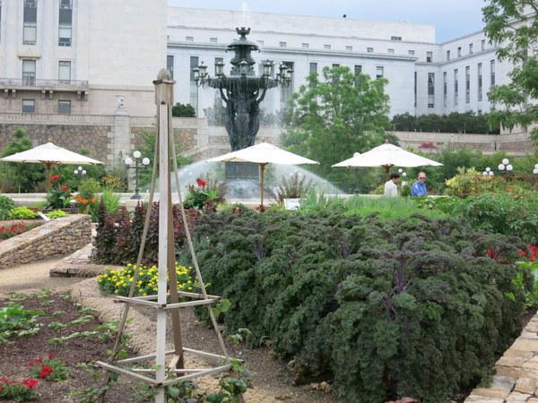 Kitchen garden in Bartholdi Garden at U.S. Botanic Garden