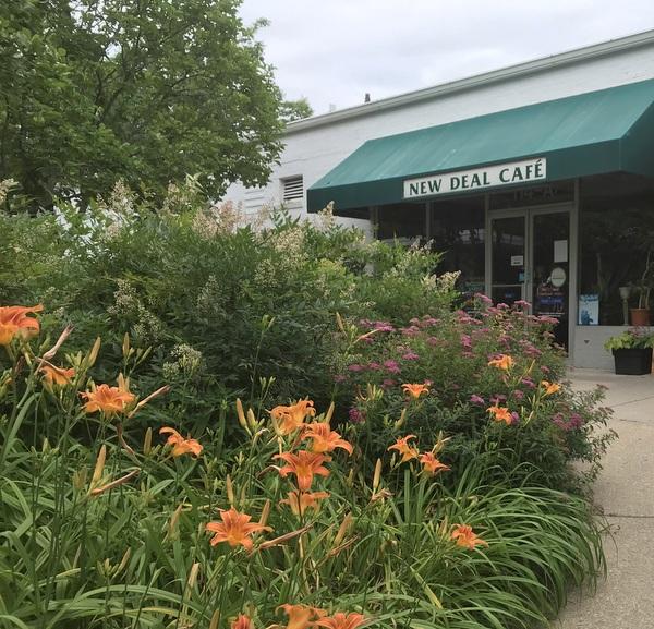 Spireas, nandinas and daylilies in city center garden