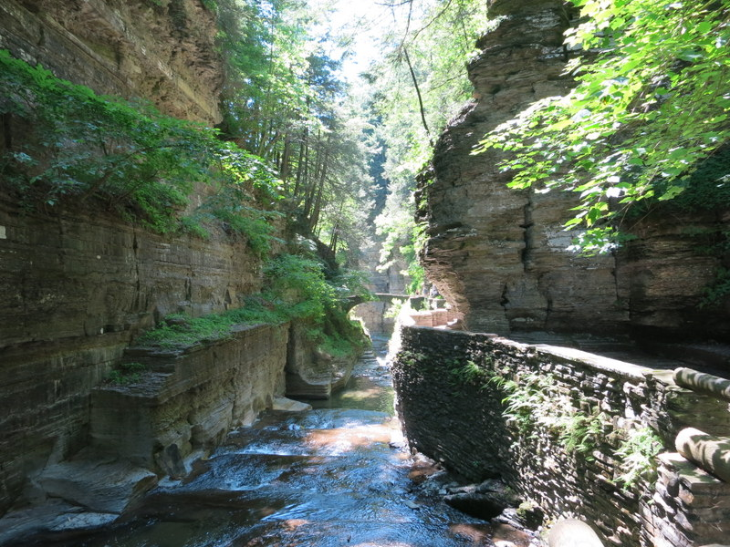 Treman Gorge in NY State