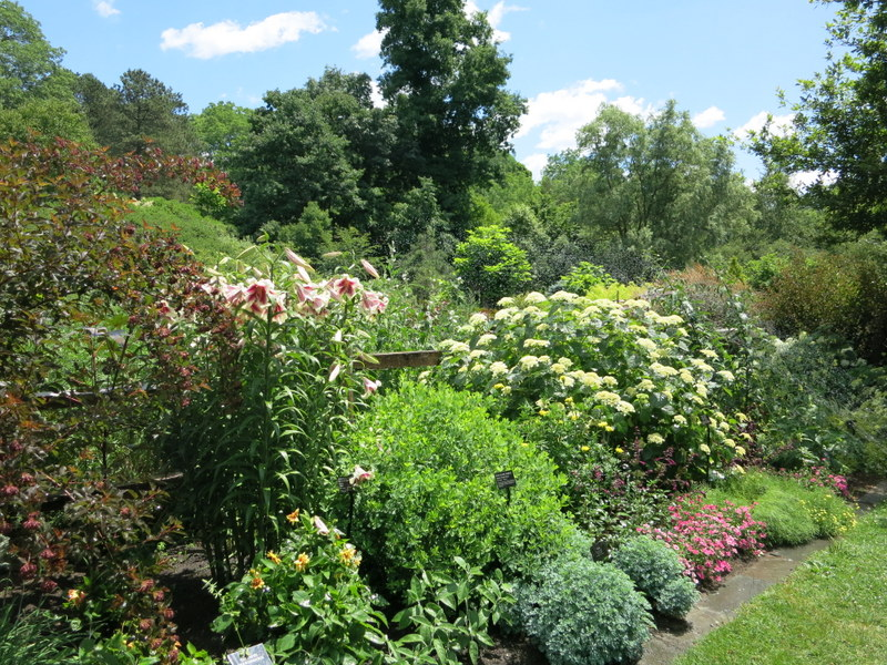 Cornell garden in Ithaca, NY