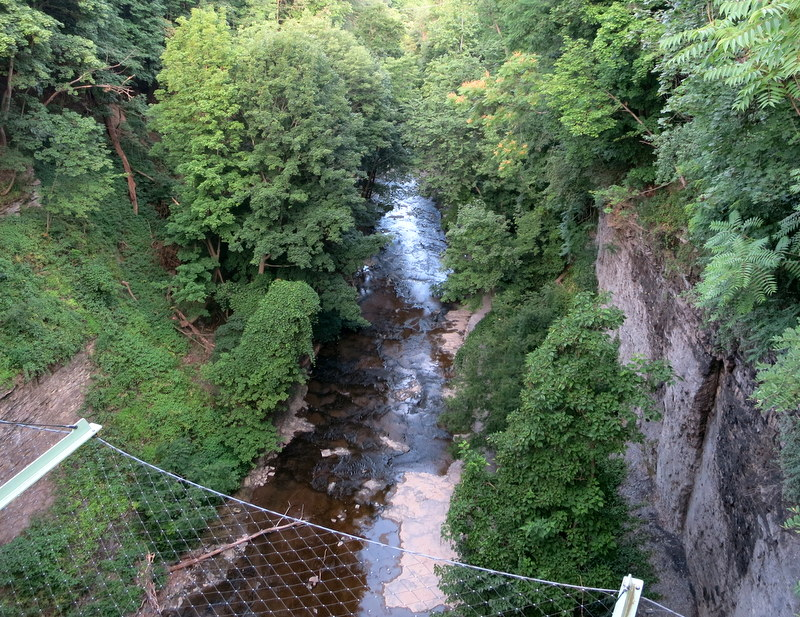 Gorge in Ithaca, NY