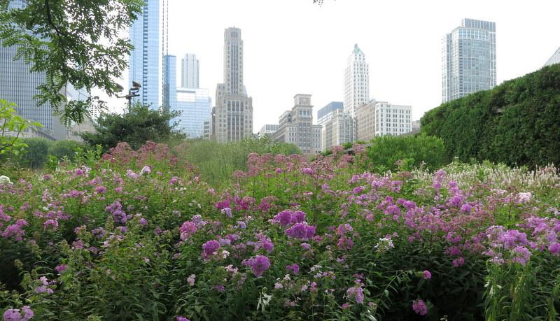 Lurie Garden in Chicago