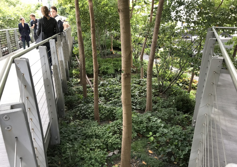 NYC's High Line Park in October of 2018