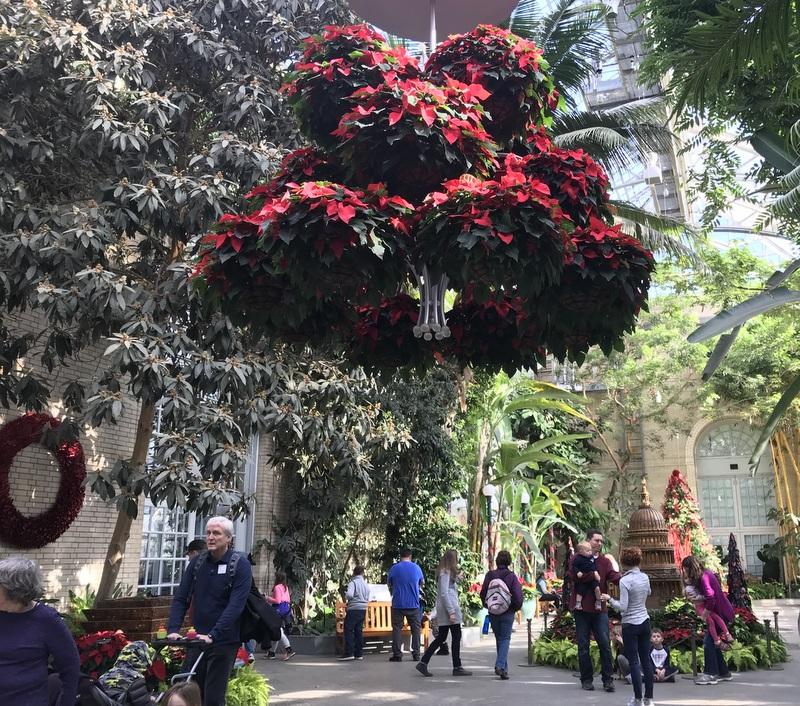 US Botanic Garden Conservatory for holidays