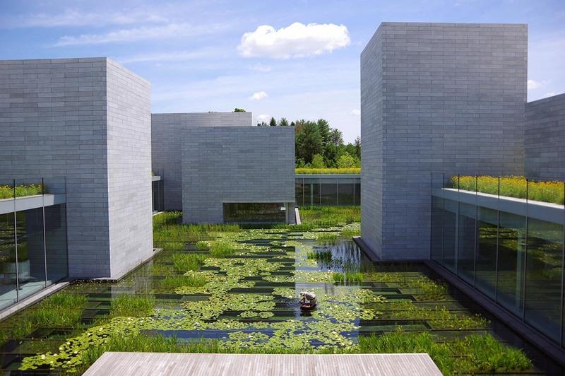 Water garden at Glenstone in Maryland
