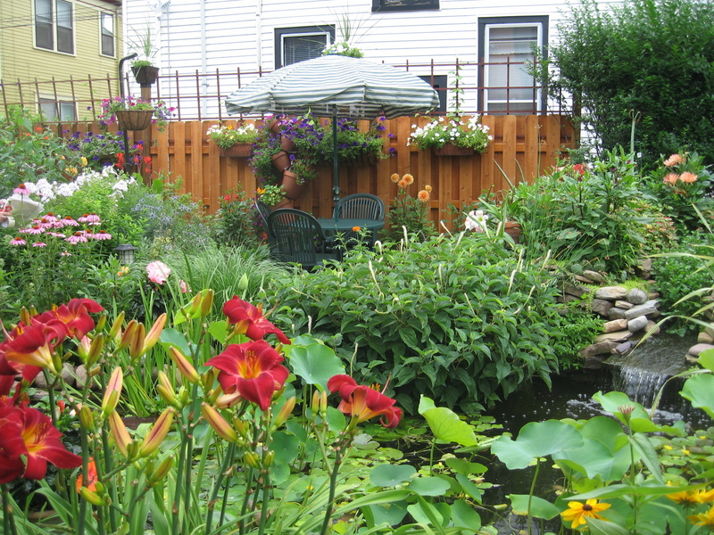 Buffalo garden during the GardenWalk Buffalo 2007