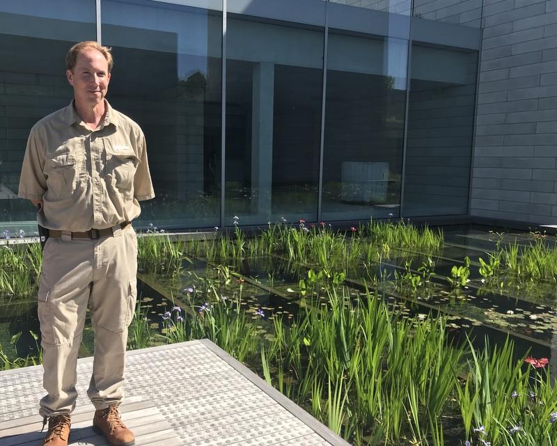 John Sander and Water Garden at Glenstone in May of 2019