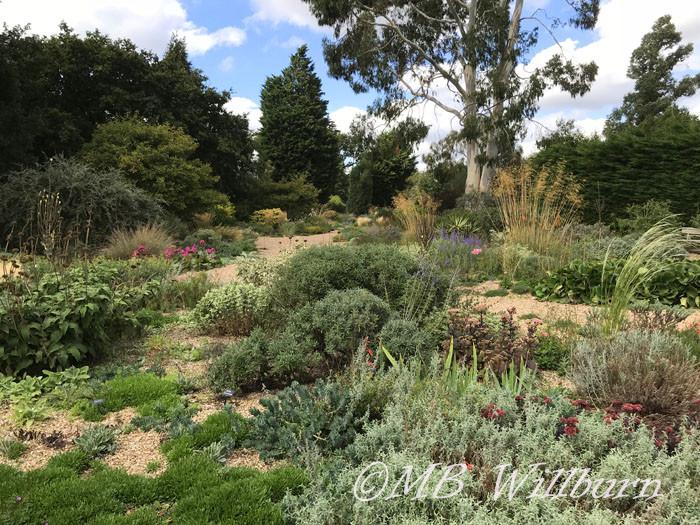 Dismiss British Garden Writers? Absurd.