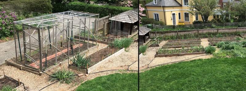 Walk-in Garden of Baltimore Master Gardener Robert Cook