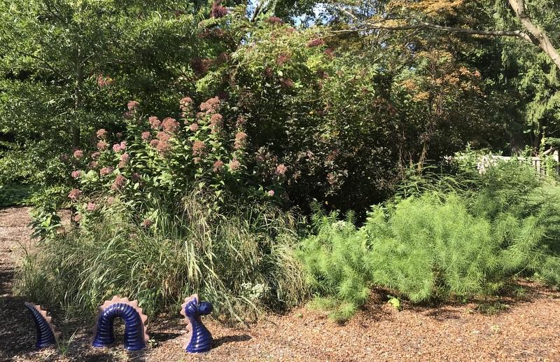 Garden of Baltimore Master Gardener Robert Cook