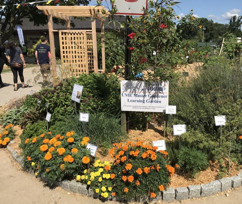 Baltimore Master Gardener Garden at Maryland State Fair