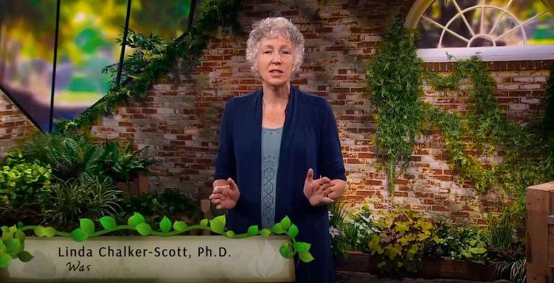 Dr. Linda Chalker-Scott teaching a Great Course