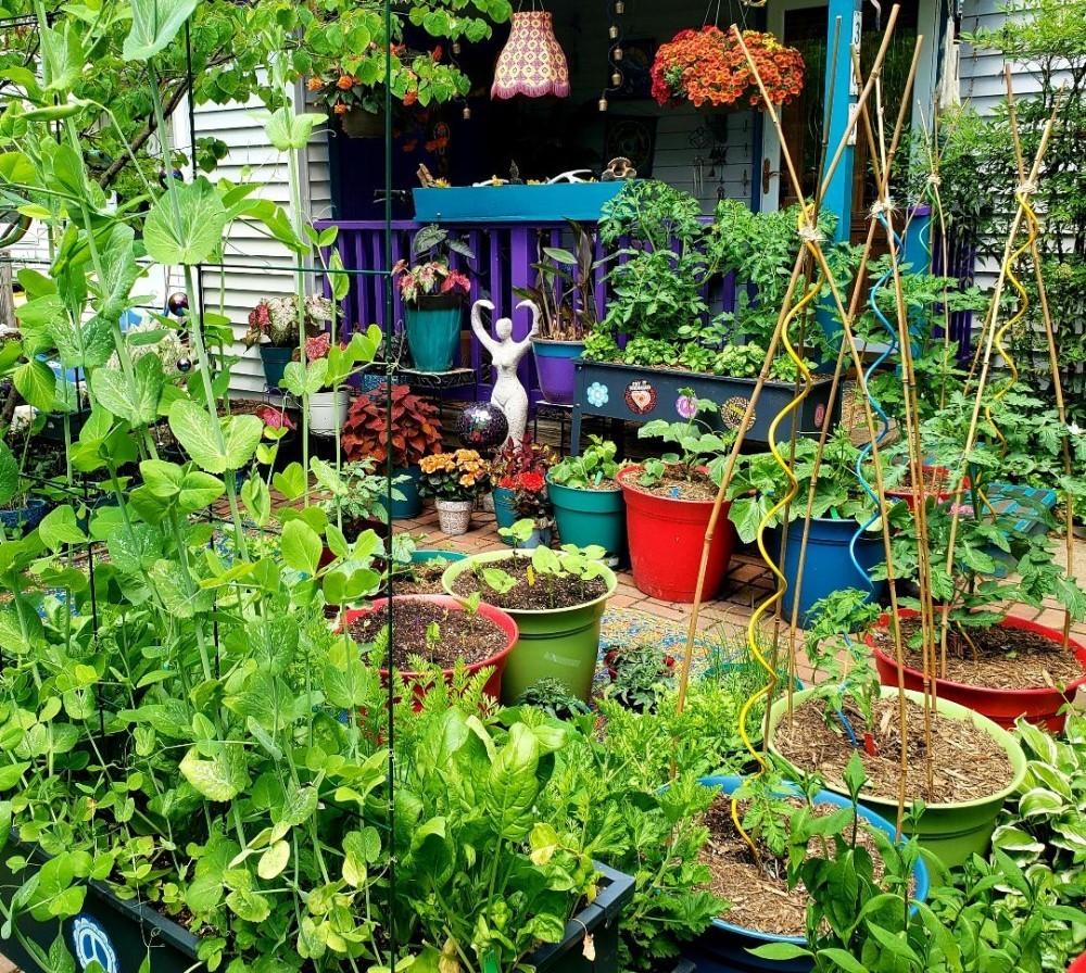Garden of Amethyst Dwyer in Greenbelt, Md.