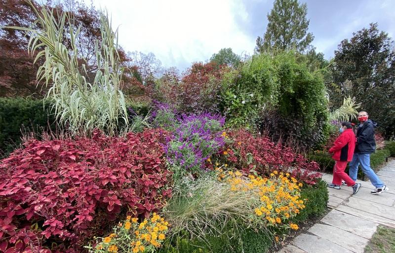 Brookside Gardens October 2020