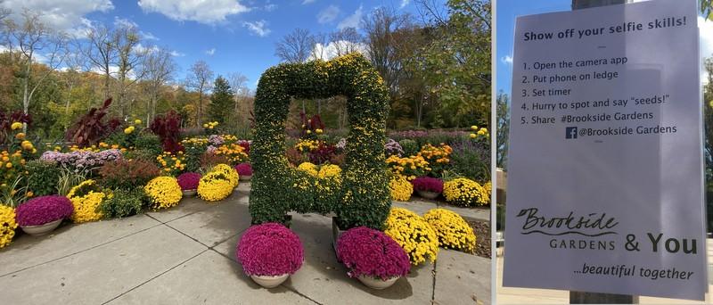 Brookside Gardens Self Station October 2020