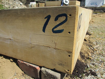is a community garden bed a red or blue thing