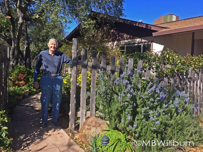 My father in his very green garden